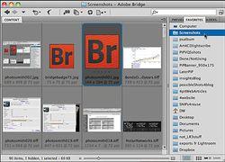 Using Bridge to organize screenshots